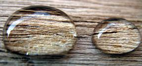 wood waterproof