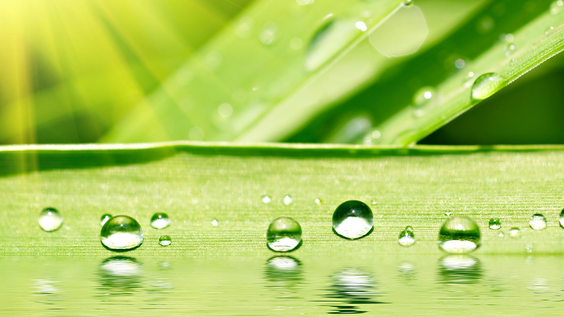 nano kaplama su itici lotus efekti