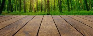 wood waterproof spray