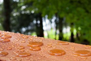 nano protection for wood